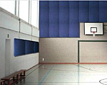 panelsorba shaped class C acoustic panels